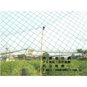三股防鳥網2.5*2.5公分防止白頭翁-貝羽製網-高雄