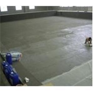 25X50M_大型泳池防水工程