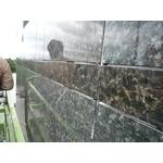 矽利康工程-八里農會