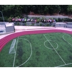 足球場草皮