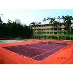 雙色紅土網球場