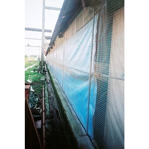 點焊網-防鳥網
