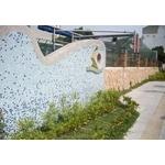 牆面景觀改造工程-pic