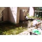 景觀魚池磁磚改造工程-pic2