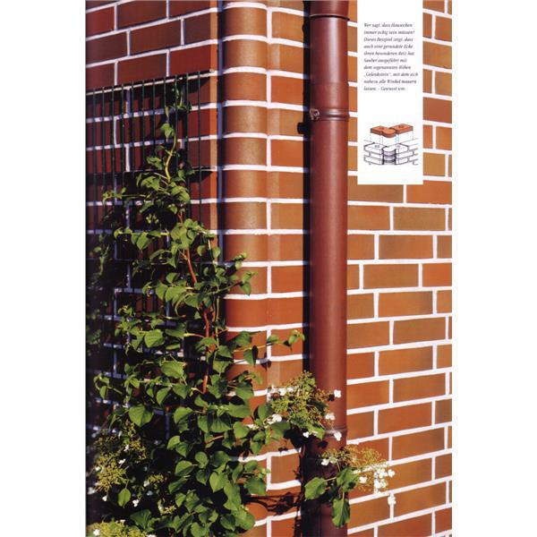 進口壁磚安裝實例 (5)