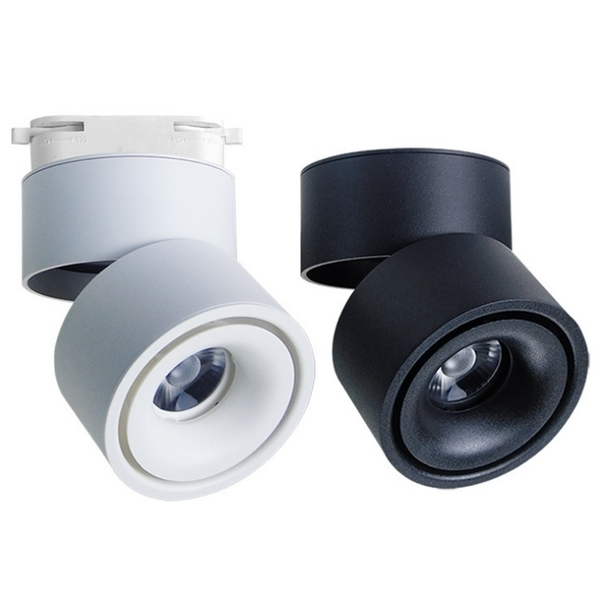 新款吸頂筒燈/也可軌道射燈