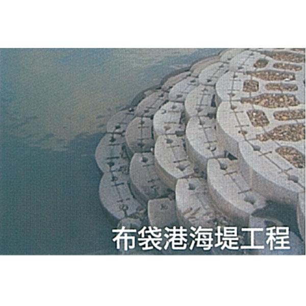 布袋港海堤工程
