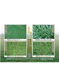 永旺草皮農場-型錄1